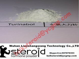 Cina Oral Turinabol Steroid Powder 4-Chlorodehydromethyltestosterone for Muscle Building pemasok