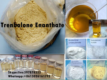 Cina Yellow Steroid Powder Trenbolone Enanthate for Bodybuilding with Good Quality Distributor