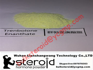 Cina Trenbolone Enanthate Powder Muscle Gain Steroid Tren E / Parabola For Fat Loss Distributor